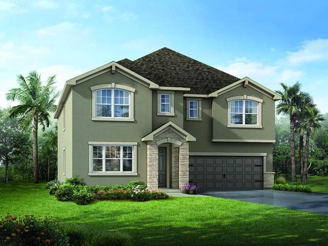 10646 Planer Picket Drive #36, Riverview, FL 33569 (MLS #T3186170) :: Jeff Borham & Associates at Keller Williams Realty