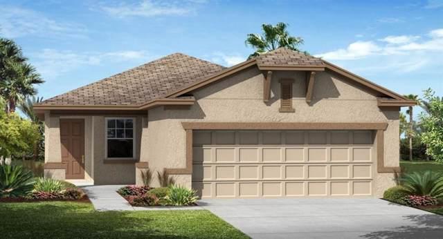 3438 Sagebrush Street, Harmony, FL 34773 (MLS #T3186181) :: Team Bohannon Keller Williams, Tampa Properties