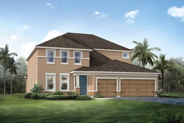 13222 Baby Belle Drive 82/E, Riverview, FL 33579 (MLS #T3186195) :: Team Bohannon Keller Williams, Tampa Properties