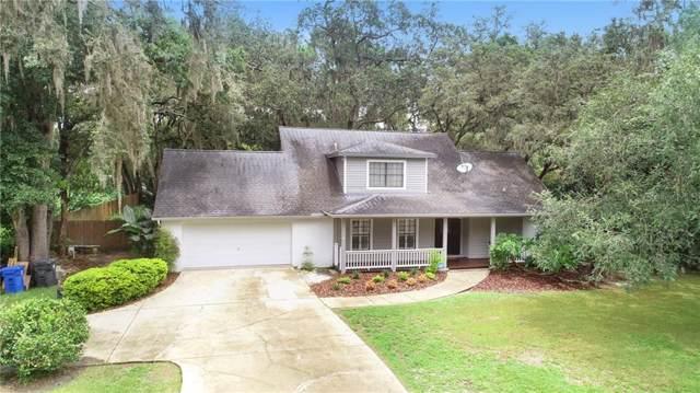 2308 Andre Drive, Lutz, FL 33549 (MLS #T3186200) :: Jeff Borham & Associates at Keller Williams Realty