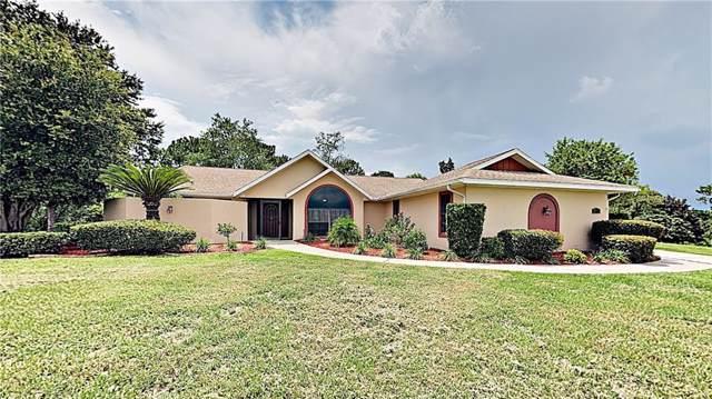 1120 N Spend A Buck Drive, Hernando, FL 34442 (MLS #T3186239) :: Godwin Realty Group