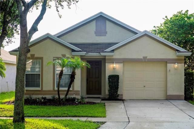 5620 Tanagerlake Road, Lithia, FL 33547 (MLS #T3186331) :: The Brenda Wade Team