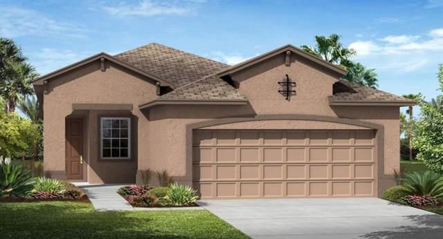 3400 Sagebrush Street, Harmony, FL 34773 (MLS #T3186338) :: The Brenda Wade Team