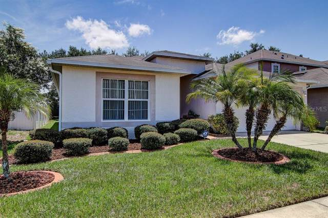 2716 Mingo Drive, Land O Lakes, FL 34638 (MLS #T3186415) :: Premier Home Experts