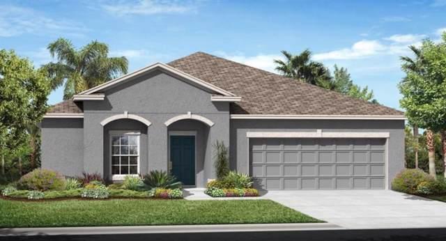 3373 Sagebrush Street, Harmony, FL 34773 (MLS #T3186416) :: Team Bohannon Keller Williams, Tampa Properties