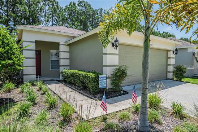 5238 Gato Del Sol Circle, Wesley Chapel, FL 33544 (MLS #T3186435) :: Lock & Key Realty
