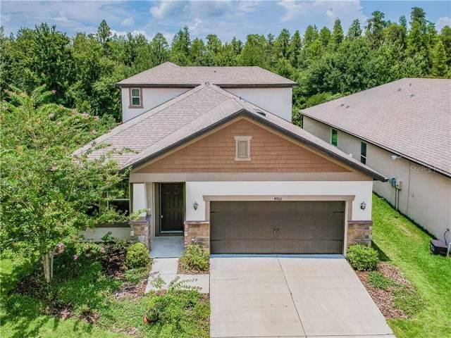 4960 Rolling Greene Drive, Wesley Chapel, FL 33543 (MLS #T3186450) :: Florida Real Estate Sellers at Keller Williams Realty