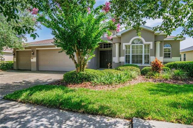 16212 Bridgepark Drive, Lithia, FL 33547 (MLS #T3186458) :: Team Bohannon Keller Williams, Tampa Properties