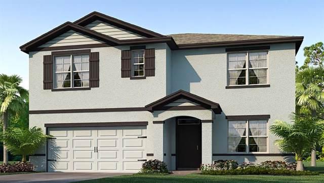 6987 Silverado Ranch Boulevard, Zephyrhills, FL 33541 (MLS #T3186466) :: Rabell Realty Group