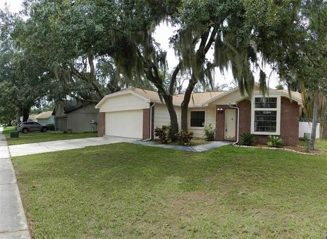 12108 Fruitwood Drive, Riverview, FL 33569 (MLS #T3186491) :: Jeff Borham & Associates at Keller Williams Realty
