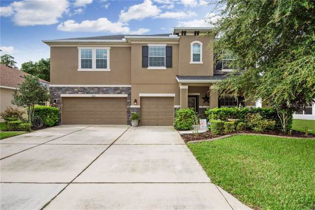 8618 Creedmoor Lane, New Port Richey, FL 34654 (MLS #T3186523) :: Bustamante Real Estate