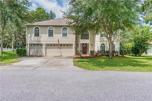 6 Bonnie Drive, Homosassa, FL 34446 (MLS #T3186525) :: Godwin Realty Group