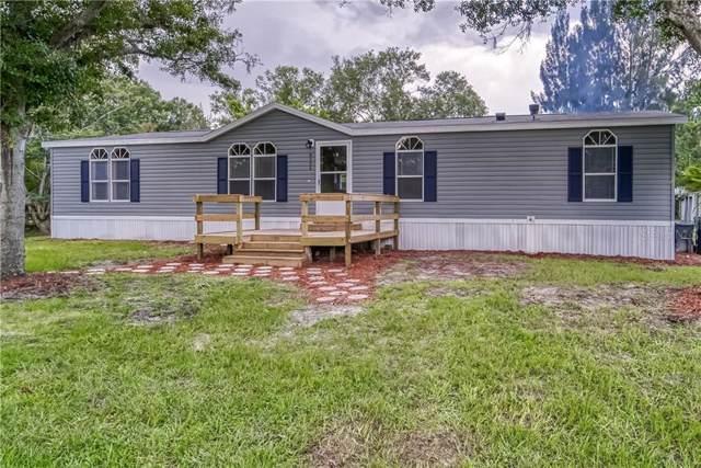 8024 N Meadowview Circle, Tampa, FL 33625 (MLS #T3186593) :: Team 54