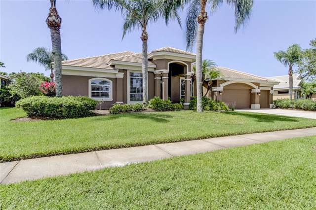 12022 Marblehead Drive, Tampa, FL 33626 (MLS #T3186603) :: Your Florida House Team