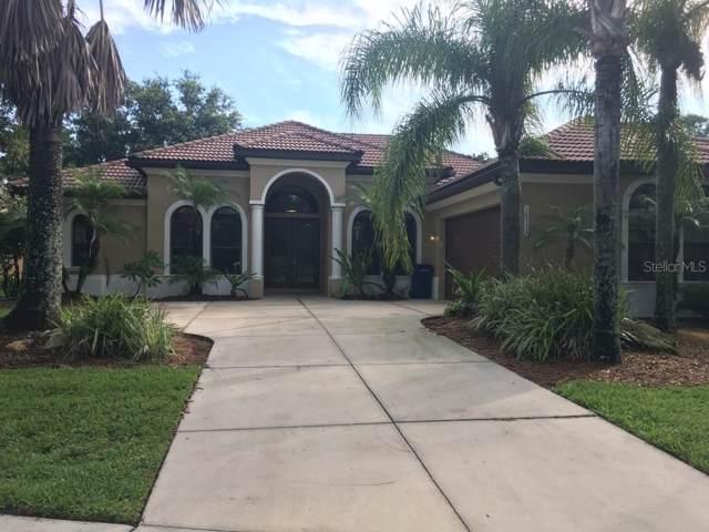 16731 4TH Avenue NE, Bradenton, FL 34212 (MLS #T3186653) :: Cartwright Realty