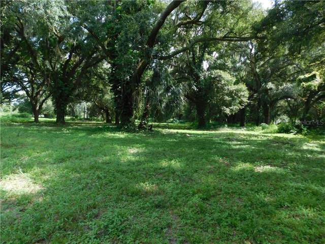 8704 Carey Road, Lithia, FL 33547 (MLS #T3186667) :: Team Bohannon Keller Williams, Tampa Properties