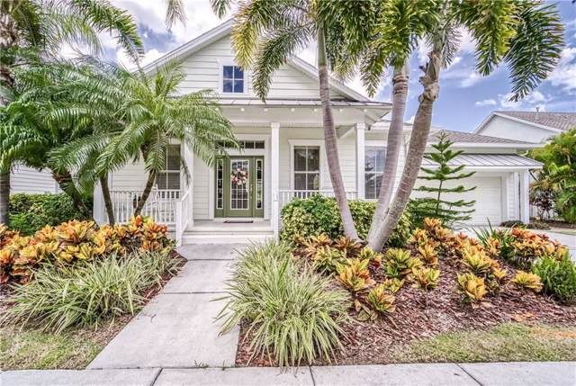 5616 Skimmer Drive, Apollo Beach, FL 33572 (MLS #T3186688) :: Team Bohannon Keller Williams, Tampa Properties