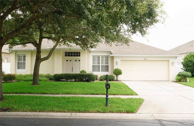 19126 Fern Meadow Loop, Lutz, FL 33558 (MLS #T3186730) :: Lockhart & Walseth Team, Realtors