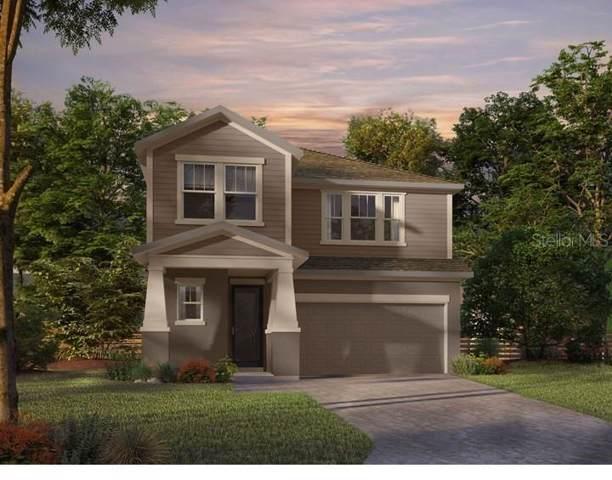 5552 Silver Sun Drive, Apollo Beach, FL 33572 (MLS #T3186770) :: Lovitch Realty Group, LLC