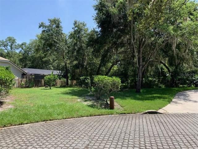 Pine Bark, Zephyrhills, FL 33543 (MLS #T3186823) :: Griffin Group
