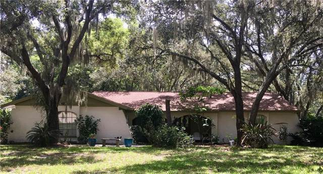 11208 Donneymoor Drive, Riverview, FL 33569 (MLS #T3186840) :: Jeff Borham & Associates at Keller Williams Realty