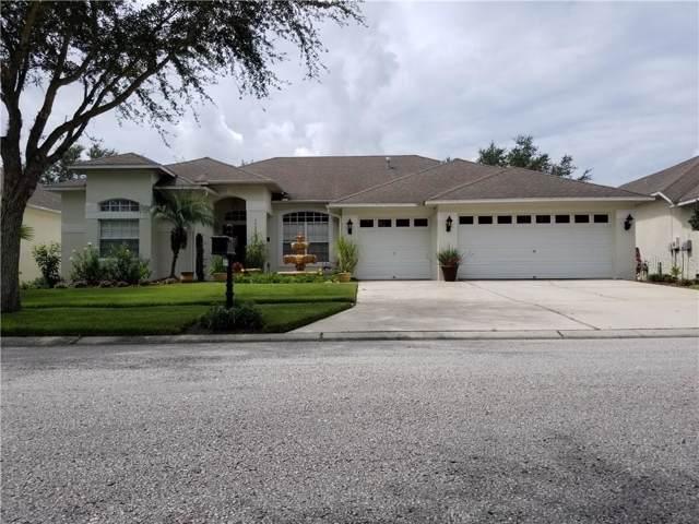 19203 N Dove Creek Drive, Tampa, FL 33647 (MLS #T3186853) :: Team Bohannon Keller Williams, Tampa Properties