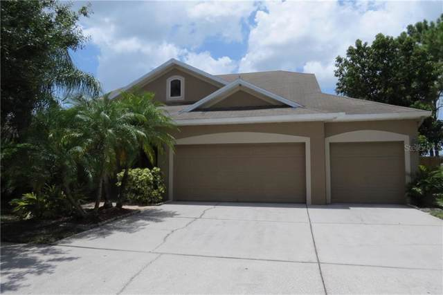 12905 Cattail Shore Lane, Riverview, FL 33579 (MLS #T3186863) :: Jeff Borham & Associates at Keller Williams Realty