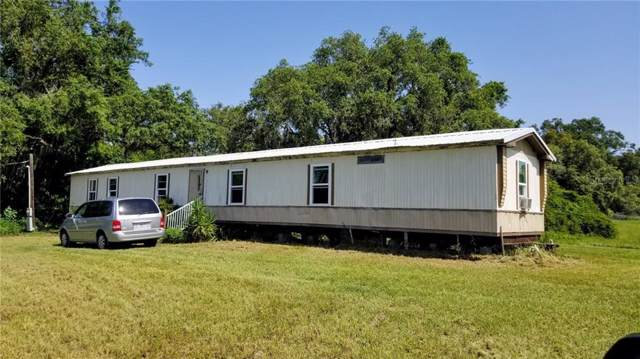 13731 Duck Lake Canal Road, Dade City, FL 33525 (MLS #T3186878) :: Cartwright Realty