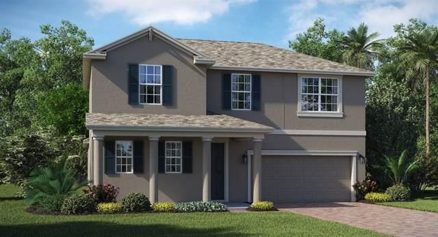 490 Brunswick Drive, Davenport, FL 33837 (MLS #T3186929) :: Cartwright Realty