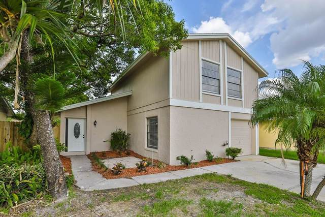 4705 Grove Point Drive, Tampa, FL 33624 (MLS #T3186931) :: Jeff Borham & Associates at Keller Williams Realty