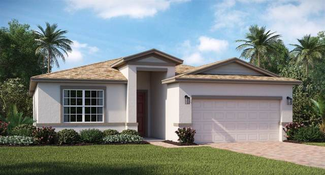 502 Brunswick Drive, Davenport, FL 33837 (MLS #T3187011) :: Cartwright Realty