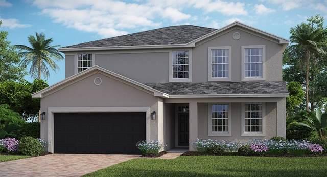 508 Brunswick Drive, Davenport, FL 33837 (MLS #T3187020) :: Cartwright Realty