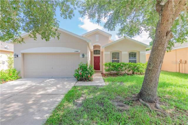 13441 Fauna Lane, Hudson, FL 34669 (MLS #T3187047) :: Cartwright Realty