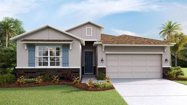 12513 Candleberry Circle, Tampa, FL 33635 (MLS #T3187082) :: The Duncan Duo Team