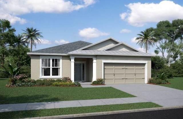 11642 Sweet Tangerine Lane #166, Tampa, FL 33626 (MLS #T3187126) :: Cartwright Realty
