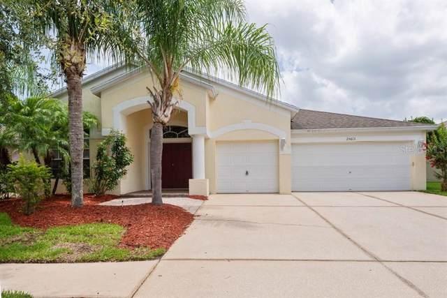 25613 Risen Star Drive, Wesley Chapel, FL 33544 (MLS #T3187150) :: Team Pepka