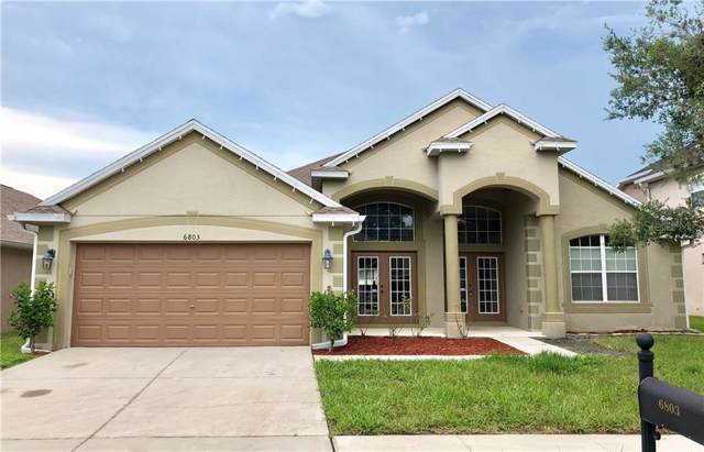 6803 Pine Springs Drive, Wesley Chapel, FL 33545 (MLS #T3187151) :: Griffin Group