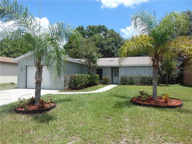 11509 Paperwood Place, Riverview, FL 33569 (MLS #T3187163) :: Griffin Group