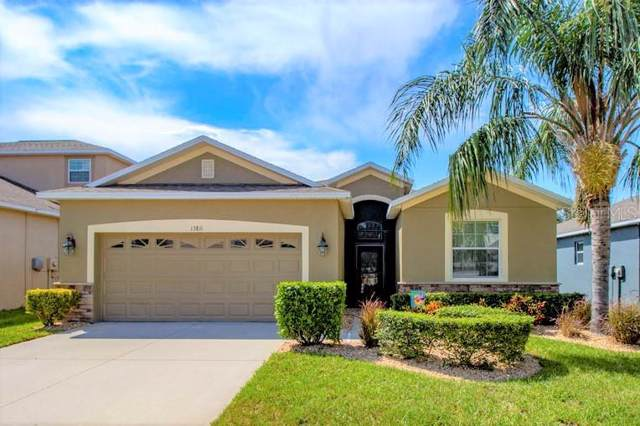 13811 Chalk Hill Place, Riverview, FL 33579 (MLS #T3187258) :: Team Bohannon Keller Williams, Tampa Properties