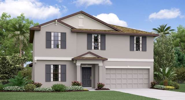 3701 Cat Mint Street, Tampa, FL 33619 (MLS #T3187261) :: Cartwright Realty