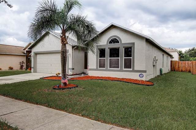 12732 Lake Vista Drive, Gibsonton, FL 33534 (MLS #T3187264) :: Griffin Group