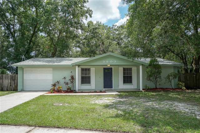 3603 Tamarix Drive, Tampa, FL 33619 (MLS #T3187291) :: Cartwright Realty