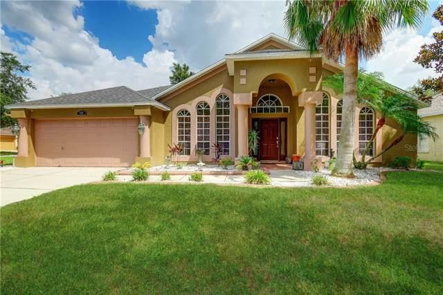 9229 Hidden Water Circle, Riverview, FL 33578 (MLS #T3187307) :: Team Bohannon Keller Williams, Tampa Properties