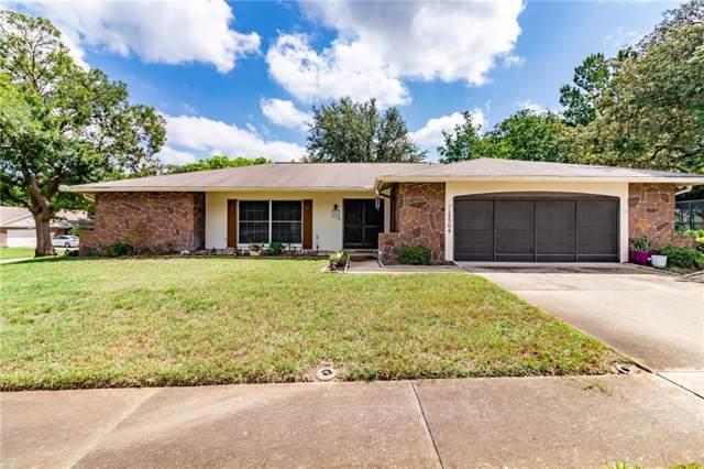 13504 Rayburn Road, Hudson, FL 34667 (MLS #T3187369) :: Team Bohannon Keller Williams, Tampa Properties