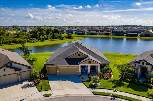 11634 Iris Spring Court, Riverview, FL 33579 (MLS #T3187397) :: Cartwright Realty