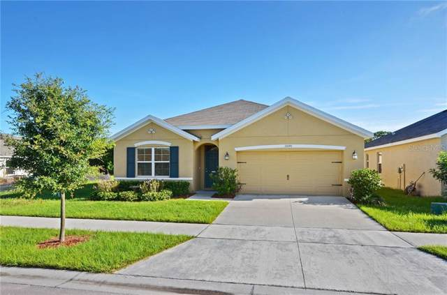 10045 Geese Trail Circle, Ruskin, FL 33573 (MLS #T3187432) :: Lovitch Realty Group, LLC