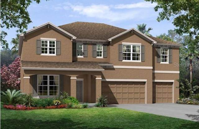 11914 Tetrafin Drive #1026, Riverview, FL 33579 (MLS #T3187474) :: Griffin Group