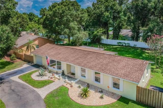 3747 E Lake Drive, Land O Lakes, FL 34639 (MLS #T3187482) :: Lovitch Realty Group, LLC