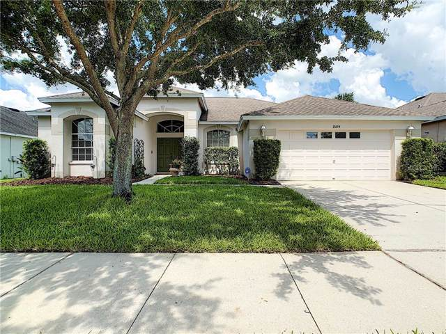 13654 Artesa Bell Drive, Riverview, FL 33579 (MLS #T3187489) :: Griffin Group