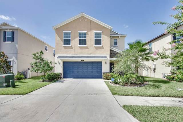 21410 Starry Eyes Way, Land O Lakes, FL 34637 (MLS #T3187505) :: Premier Home Experts